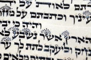 Torah Writing